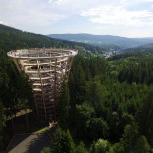 Stezka v korunách stromů. Foto: www.stezkakrkonose.cz