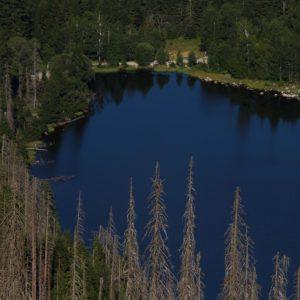 Plešné jezero. Foto: Jan Karhánek